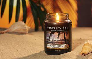 Bild für Kategorie Black Coconut