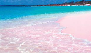 Bild für Kategorie Pink Sands